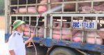Khẩn cấp xây dựng kịch bản ứng phó dịch tả lợn châu Phi