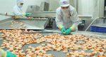Tin vui ngành thủy sản: Tôm Việt thêm rộng đường sang Mỹ